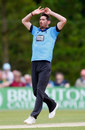 Chris Liddle picked up 1 for 41, Sussex v Somerset, NatWest T20 Blast, South Division, Arundel, June 15, 2014