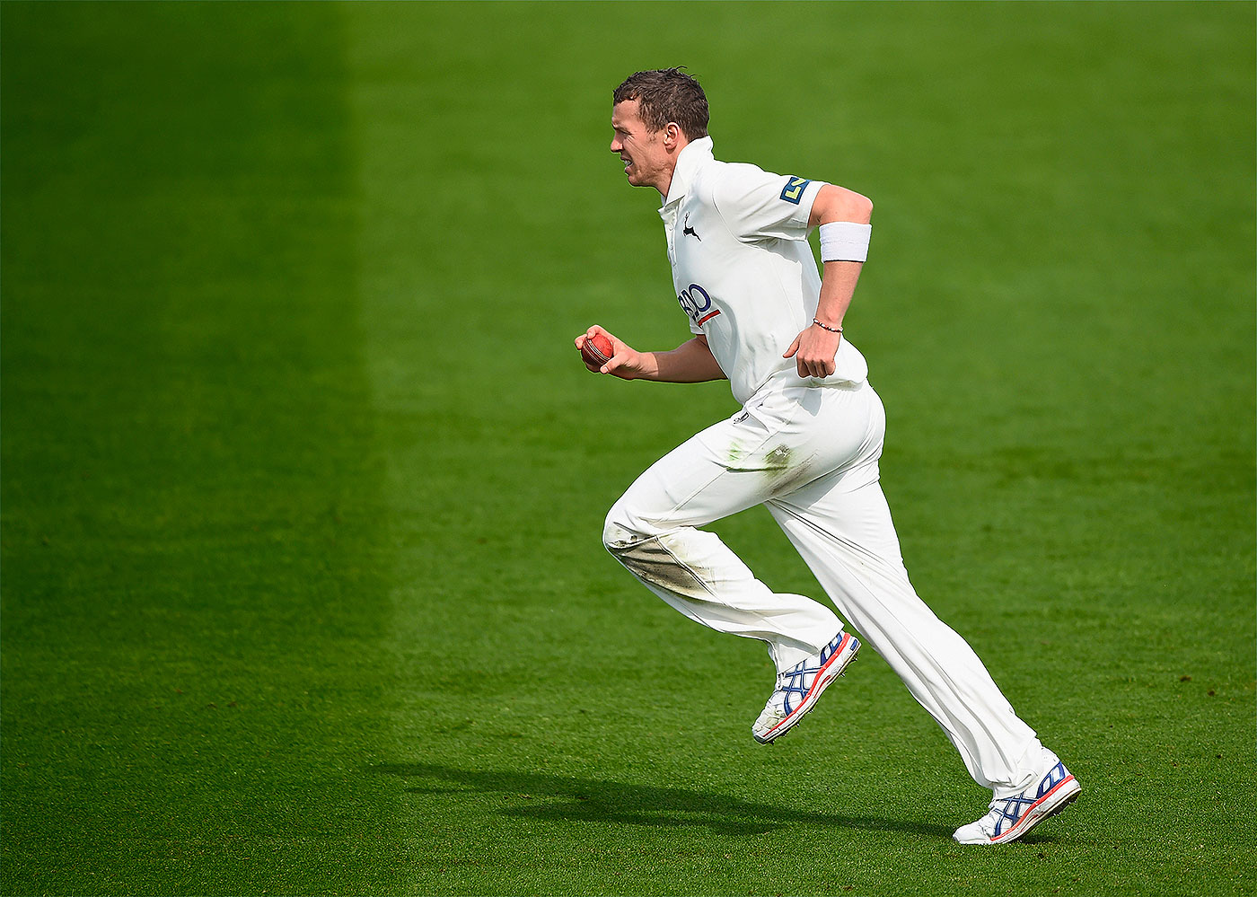 So-so summer: Siddle finished his Notts stint with 37 wickets at 31.48