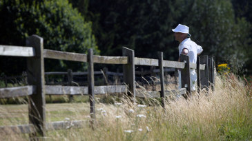 A cricketer leans on the fence of the Stoneleigh Abbey ground