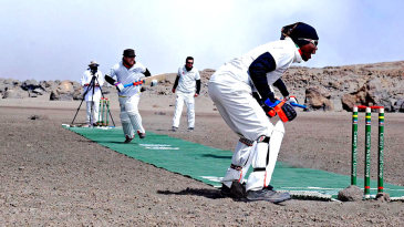 Cricket on the roof of Africa