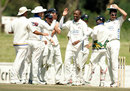 Monde Zondeki celebrates the wicket of Steve Harmison, Cape Cobras v Lions, SuperSport Series, Paarl, January 10, 2007