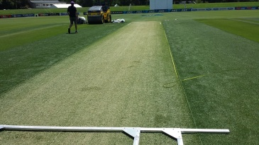 A green Hagley Oval pitch two days out from Boxing day
