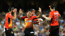 Yasir Arafat is all smiles after taking a wicket, Adelaide Strikers v Perth Scorchers, Big Bash League 2014-15, Adelaide, January 6, 2015