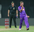 Jake Reed finished with 4 for 11 in his third T20 game, Sydney Thunder v Hobart Hurricanes, Big Bash League 2014-15, Sydney, January 9, 2015