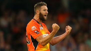 Andrew Tye celebrates a wicket