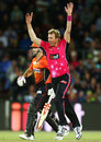 Brett Lee claimed 3 for 25 in his last game, Perth Scorchers v Sydney Sixers, Big Bash League 2014-15, final, Canberra, January 28, 2015
