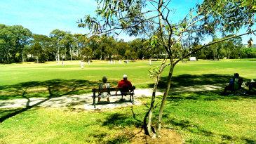 Spectators at Kensington Oval, Adelaide