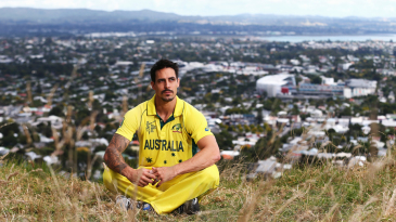 Mitchell Johnson thinks things over, perched on Mount Eden