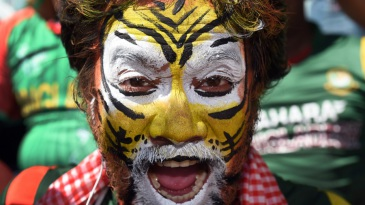 A Bangladesh fan does the tiger impression