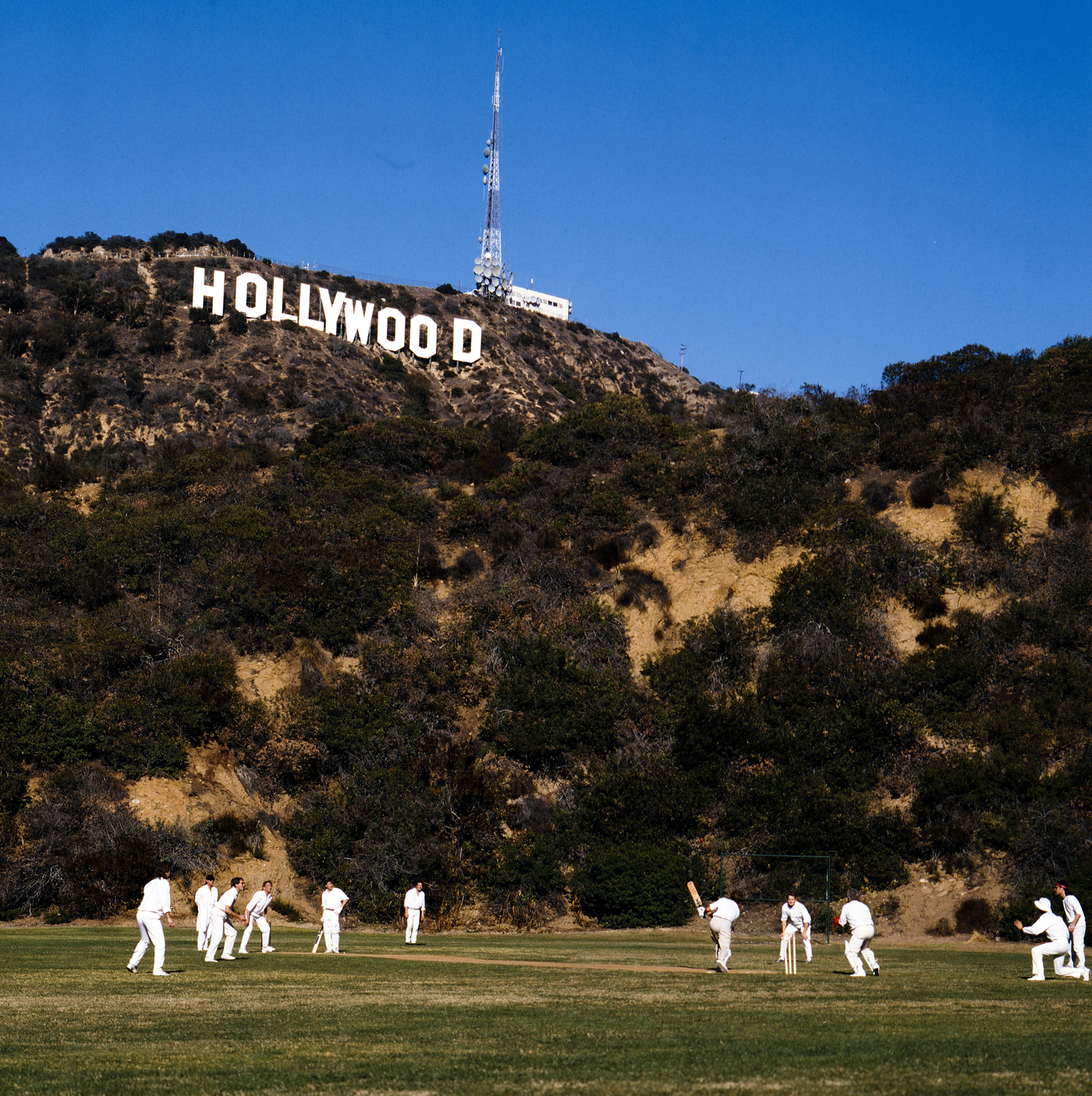 Expats play cricket with the Hollywood sign in the background