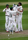 Charlie Shreck picked up 5 for 71, Essex v Leicestershire, County Championship, Division Two, Chelmsford, 3rd day, June 2, 2015