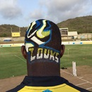 Darren Sammy's new hairdo grabbed eyeballs, St Lucia Zouks v St Kitts and Nevis Patriots, Gros Islet, June 24, 2015