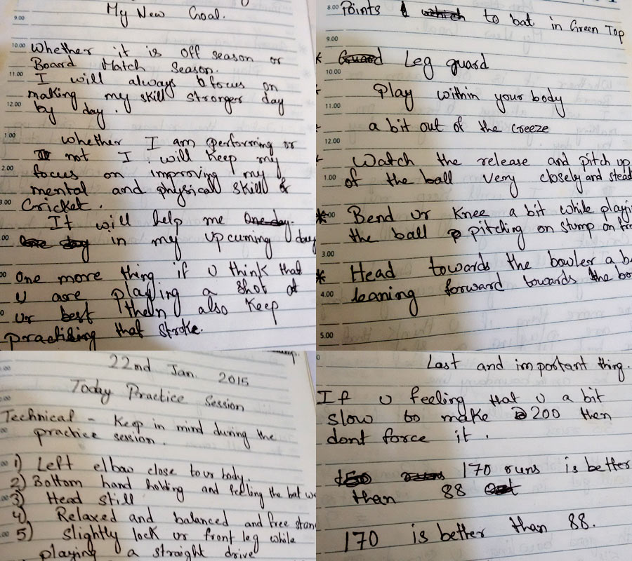 Diary of a cricketer: Ankit took notes on ways to improve his game