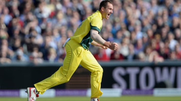 John Hastings picked up the wicket of Alex Hales