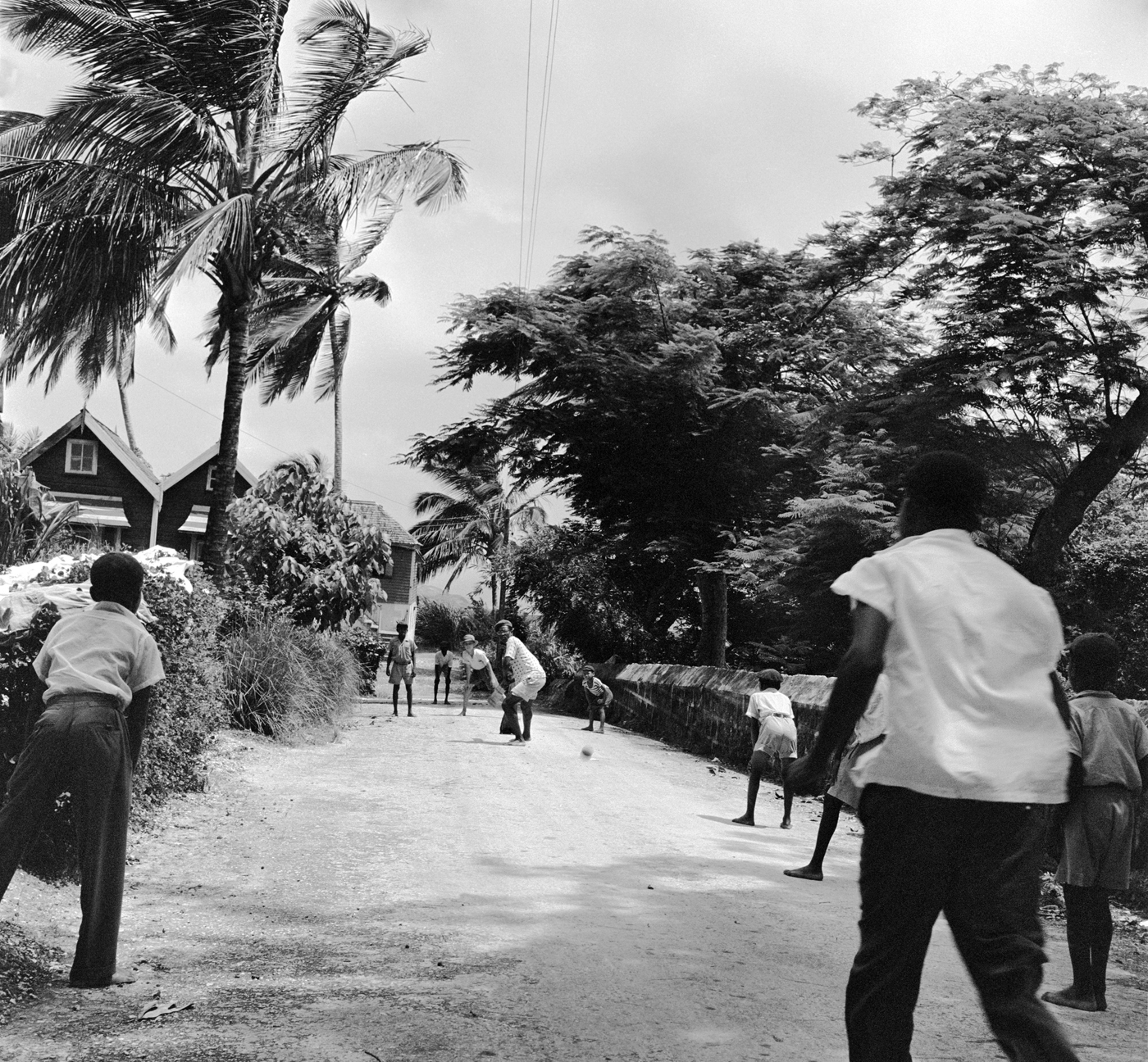 Children play cricket in a street in Port-of-Spain