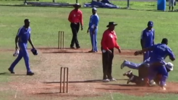 Screengrab of brawl in a Bermuda cricket game