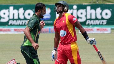 Wahab Riaz celebrates after taking the wicket of Chamu Chibhabha