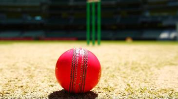 A pink ball on the pitch at the MCG