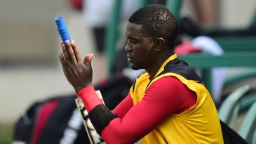 Elton Chigumbura looks after his bat