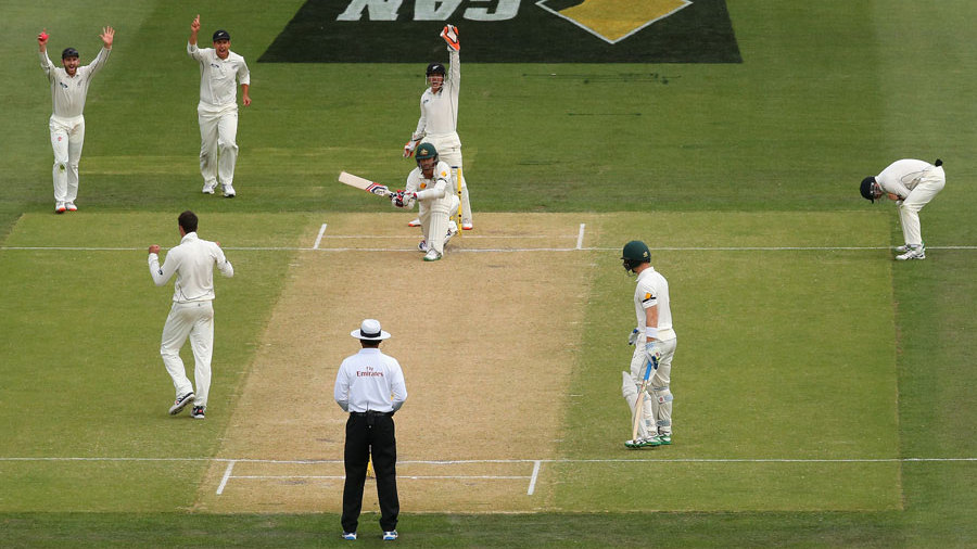 The DRS debate: Nathan Lyon was controversially given not out