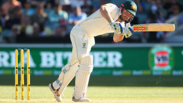 Shaun Marsh helped steady the chase in partnership with Adam Voges