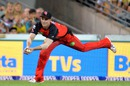 Tom Beaton took an excellent running catch to dismiss Nathan Reardon, Brisbane Heat v Melbourne Renegades, BBL 2015-16, Brisbane, December 19, 2015