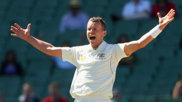 Peter Siddle appeals for a wicket