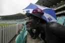 The Yabba statue finds shelter, Australia v West Indies, 3rd Test, Sydney, 3rd day, January 5, 2016