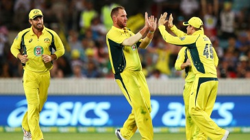 John Hastings celebrates a wicket with his team-mates