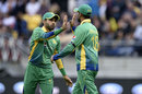 Mohammad Rizwan and Shoaib Malik celebrate a wicket, New Zealand v Pakistan, 3rd T20I, Wellington, January 22, 2016