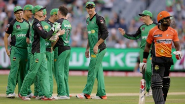 Stars celebrate the wicket of Michael Carberry