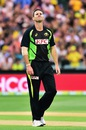 Shaun Tait had an expensive first spell, Australia v India, 1st T20 international, Adelaide, January 26, 2016