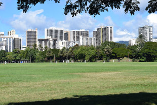 A cricket match in Kapiolani Park in Honolulu with the Waikiki skyline as the backdrop