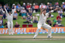 James Pattinson appeals for an lbw against Kane Williamson, New Zealand v Australia, 2nd Test, Christchurch, 4th day, February 23, 2016