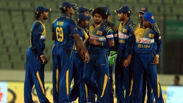 Lasith Malinga celebrates a wicket with his team-mates