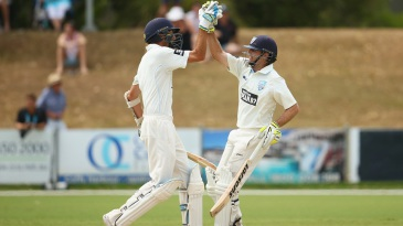 Trent Copeland and Ben Rohrer's 120-run partnership sealed New South Wales' chase