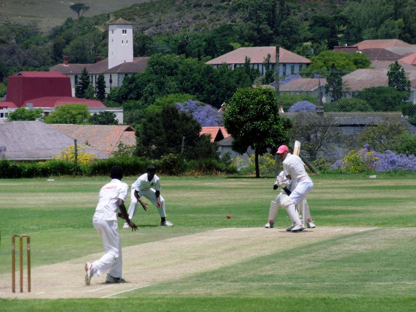 marathi essay on cricket