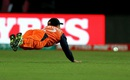 Roelof van der Merwe dives to stop the ball, Ireland v Netherlands, World T20 qualifiers, Group A, Dharamsala, March 13, 2016