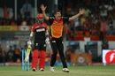 Moises Henriques appeals for the wicket of KL Rahul, Sunrisers Hyderabad v Royal Challengers Bangalore, IPL 2016, Hyderabad, April 30, 2016