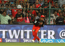 Sachin Baby holds on to a catch to dismiss Manish Pandey, Royal Challengers Bangalore v Kolkata Knight Riders, IPL 2016, Bangalore, May 2, 2016
