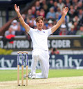 Steven Finn bowled a fruitless spell, England v Sri Lanka, 1st Test, Headingley, 3rd day, May 21, 2016