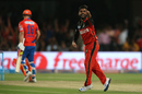 Iqbal Abdulla celebrates the wicket of Aaron Finch, Gujarat Lions v Royal Challengers Bangalore, IPL 2016, Qualifier 1, Bangalore, May 24, 2016