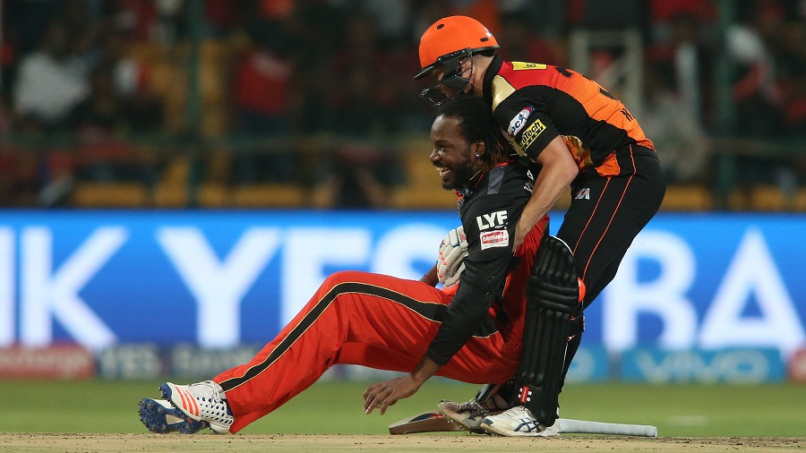 David Warner helps Chris Gayle get back on his feet