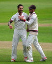 Peter Trego celebrates the wicket of Dawid Malan, Somerset v Middlesex, County Championship, Division One, Taunton, 2nd day, July 11, 2016
