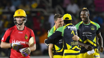 Dale Steyn celebrates a wicket with his team-mates