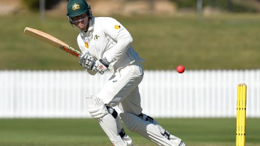 Marcus Stoinis scored a century in the first innings