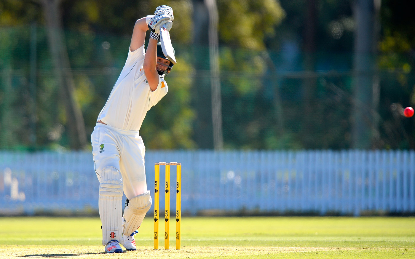 Cool Hand Matt: 20-year-old Renshaw has been practising batting right-handed since he was a kid, and is comfortable playing both the switch hit and the reverse sweep