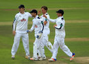 Brad Wheal celebrates a wicket, Hampshire v Yorkshire, County Championship, Division One, Ageas Bowl, 3rd day, September 2, 2016