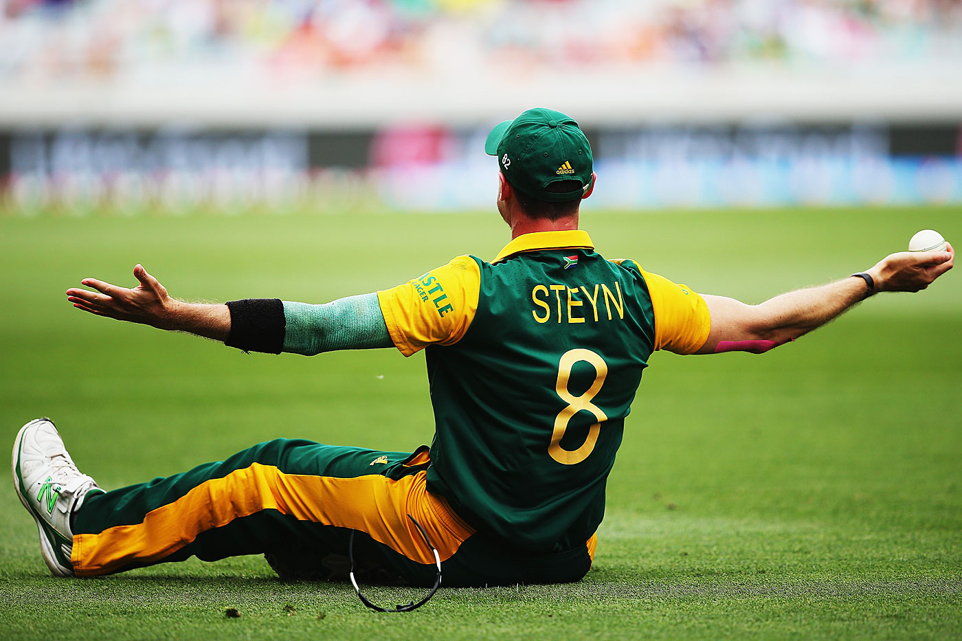 Dale Steyn played himself in <i>Blended</i>, with Adam Sandler