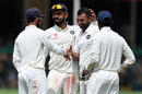 Team-mates congratulate Mohammed Shami after his wicket of Mark Craig, India v New Zealand, 1st Test, Kanpur, 5th day, September 26, 2016